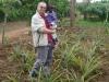 uganda-wrd-ananasw